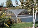 Kasco 4400VFX Aerating Fountain